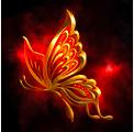赤焔蝶の画像