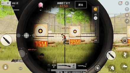 DS QS 画像