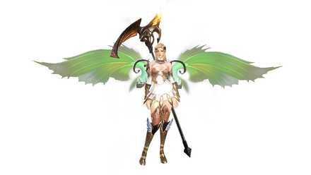 ネオンテトラの翼の画像