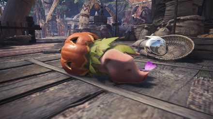 かぼちゃの逆襲の画像.jpg