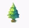 針葉樹の画像