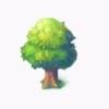 広葉樹の画像