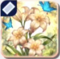 バラドンナの花画像