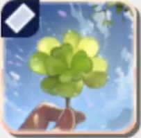 八つ葉のクローバー画像