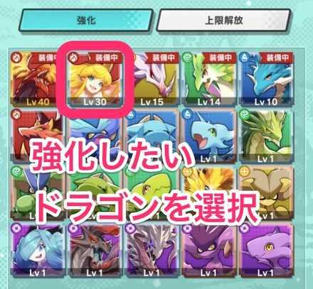 ドラゴン選択の画像