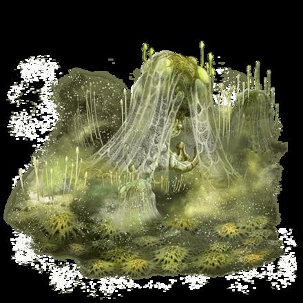 モルフスの魔胞子・壌の画像