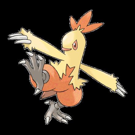 Pokemon Sword and Shield - Combusken