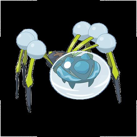 オニシズクモ画像
