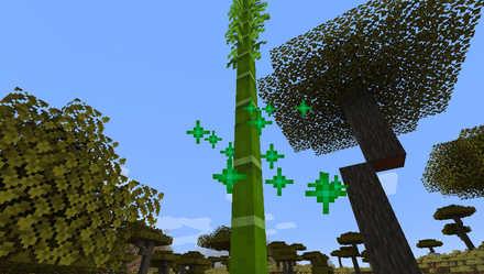 マイクラの竹を育てて入手