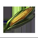 トウモロコシの画像