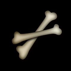 巨大な骨の画像