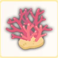 深海のサンゴの画像