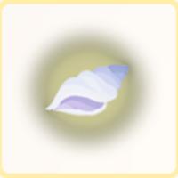 光る巻き貝の画像