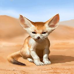 砂漠の狐(砂漠の精霊)の画像