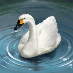 ハクチョウ(鳥のフェアリー)の画像