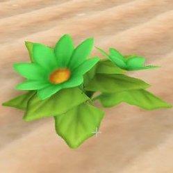 みどりの花