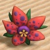 奇妙な大花