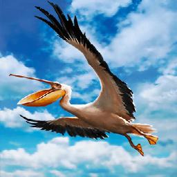 ペリカン(ポケットを持つ鳥)の画像