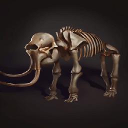 戦象の遺骨の画像