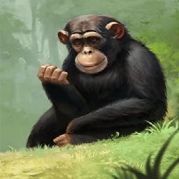 チンパンジー(狡猾な泥棒)