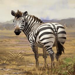 シマウマ(ロバか馬か)の画像