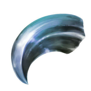 炎獣神の爪【希少種】の画像