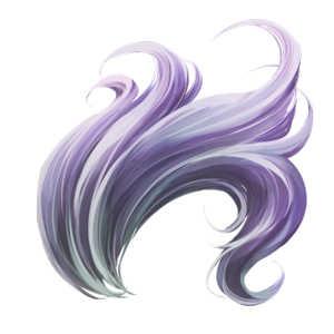 風神の尾【希少種】の画像