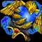 聖珠神鳳玉の画像