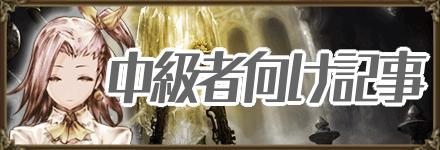 中級者向け記事.png