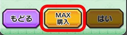 MAX購入