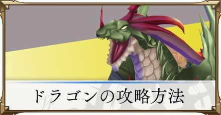 ドラゴンの攻略と立ち回り