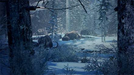 渡りの凍て地 生態系