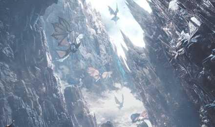 渡りの凍て地 岩石エリア