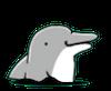 イルカ娘の画像