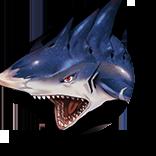 スプラのお魚の画像