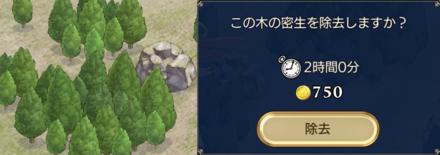 木・岩の画像