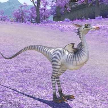 コエルロサウルスの画像