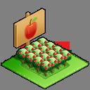 ★4素朴なりんご畑の画像