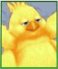 Chubby Chocobo