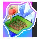★7高貴なトマト畑の欠片