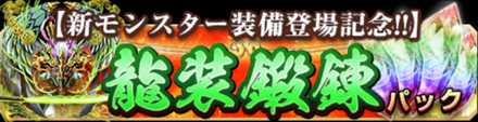 龍装鍛錬パック.jpg