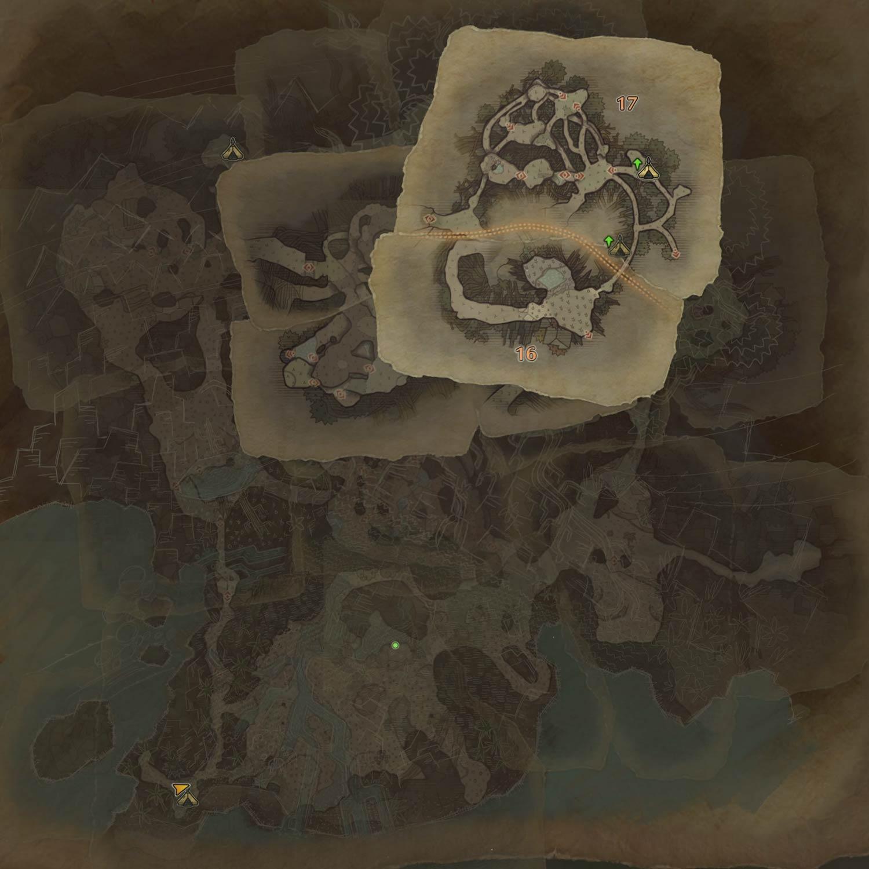 古代樹の森の3層の画像