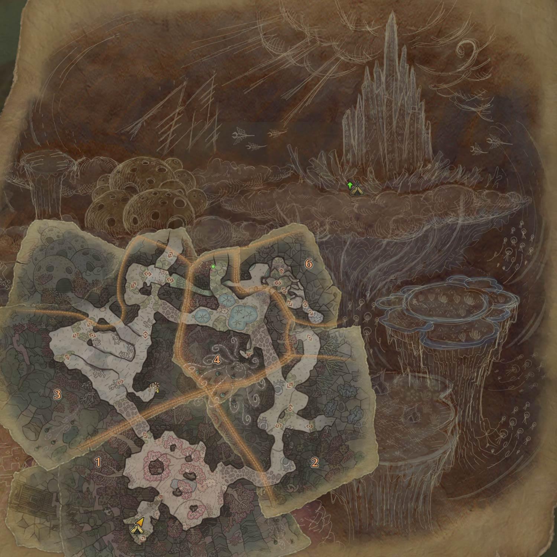陸珊瑚の台地の1層の画像