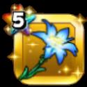 [テンスの花