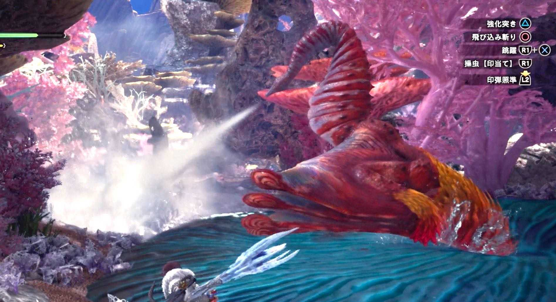 プケプケ亜種 汲み上げ大放水