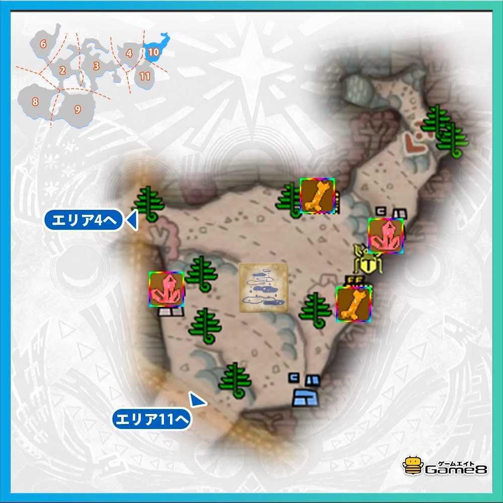導きの地の陸珊瑚エリア10