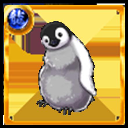 赤ちゃんペンギンの画像