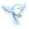 巣立ちの小鳥の画像