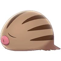 Swinub Image