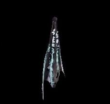 深淵の龍骸布・空の画像